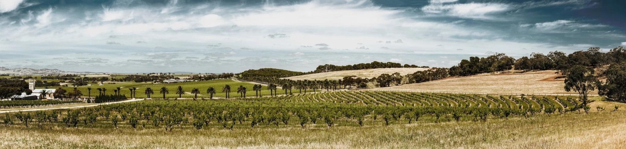 トルブレック畑
